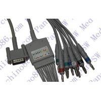 Quality HP one piece 10-lead ECG cable with leadwire wholesale
