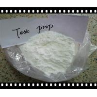 Pharmaceutical GMP Grade Testosterone Phenylpropionate CAS 1255-49-8