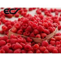 Quality Antioxidant Organic Food Ingredients Dehydrated Raspberry Powder For Reduce Wrinkles wholesale