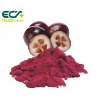 Quality Red Cranberry Fruit Powder , Natural Food Supplement Powder Prevent Cancer wholesale