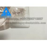 Quality Test Base Suspension Injectable White Water Base Fitness Micro Powder wholesale