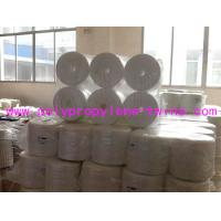 Quality Split Film 7500D Tomato Tying Twine Raw White For Agriculture Packing wholesale