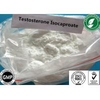 Quality Raw Steroid Powder Testosterone Isocaproate For Muscle Gain CAS 15262-86-9 wholesale