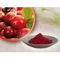 Quality Beauty Effect Organic Food Ingredients Red Fine Oxycoccos Cranberry Extract Powder wholesale