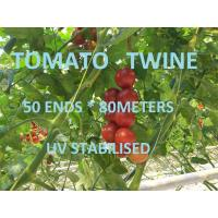 Quality Greenhouse Tomato Tying Twine Colorful Plastic Garden Packing Raffia String wholesale
