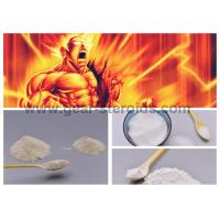 Quality Healthy Testosterone Steroid Hormone Testosterone Cypionate for Men Muscle wholesale