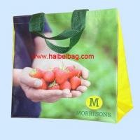 Cheap PP Woven Shopping Bag for sale