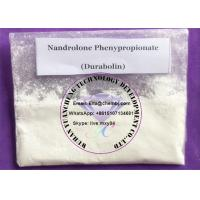Quality Supply Cycle 99% Npp Durabolin Nandrolone Phenylpropionate For Bodybuilder Supplement wholesale