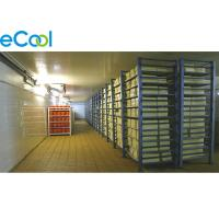 Quality -25℃ ~ -18℃ ELT19 Frozen Food Storage Warehouses 6000Tons Industrial Refrigeration wholesale