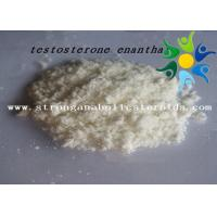 Quality Raw Test E Powder Testosterone Anabolic Steroid Testosterone Enanthate CAS 315-37-7 wholesale