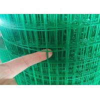 Quality 1/2'' Plastic Coated Wire Mesh Fencing Rolls , Chicken Galvanised Mesh Fencing wholesale