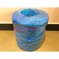 Cheap LT027 Elephant  Polypropylene Lashing Twine 2MM - 6MM Diamerter With UV Additive for sale