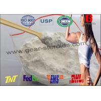 Quality High Purity Wholesale Steroid Hormone Testosterones Base CAS 58-22-0 for Bodybuilding wholesale