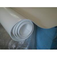 Buy cheap 70shore A Colored Plastic Sheet Expand Teflon Sheet For Pharmaceutical , Chemical from wholesalers