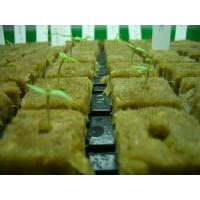 Buy cheap Planting Hydroponic Rockwool Grow Cubes 60kg /m3 50mm - 100mm Thickness from wholesalers