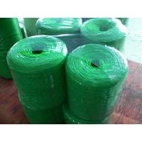 Quality Various twisted Polypropylene Twine UV additive , strong tenacity wholesale