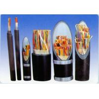 Quality Plastic insulated control cables wholesale