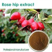 Quality High quality Vitamin C 500mg with Rose Hips chewable wholesale