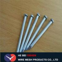 Quality Hot-dipped galvanized steel concrete nails sale wholesale
