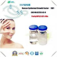 Amino Acids And Vitamin Peptide And Protein EGF Growth Factor