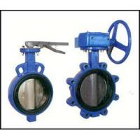 Quality Bi-axial butterfly valve witho wholesale