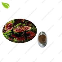 Quality Ganoderma Extract >herbal extract wholesale